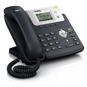 IP Phone T21P